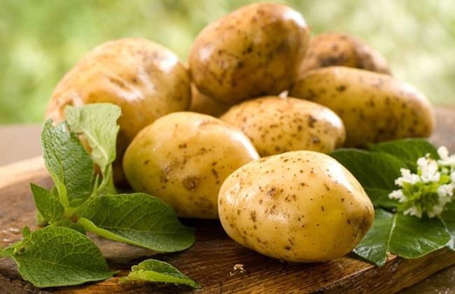 الحل السحري.. حبة بطاطس تخلصك من كريمات البشرة