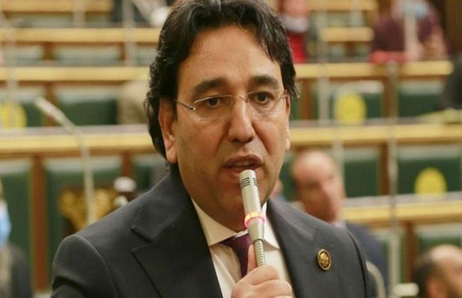 برلماني : قانون حماية المصريين بالخارج ضمان لحفظ كرامة المواطنين