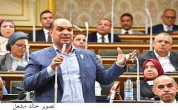 """برلماني: تقرير """"فيتش"""" للتصنيف الائتماني يجسد قوة وصلابة الاقتصاد المصري"""