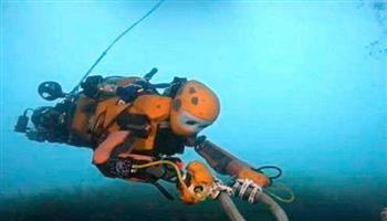 كندا تستخدم روبوتا بحريا لمراقبة الحيتان شمال الأطلسي
