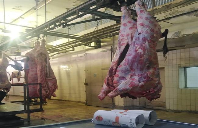 """جهود """"الزراعة"""" في العيد.. إزالة 305 تعديات وذبح 22 ألف أضحية (إنفوجراف)"""