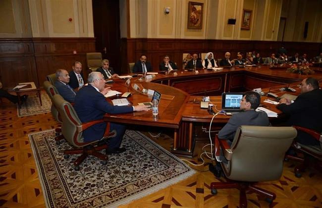 وزير الزراعة: مصر لم تشهد أي نقص في السلع الغذائية خلال جائحة كورونا