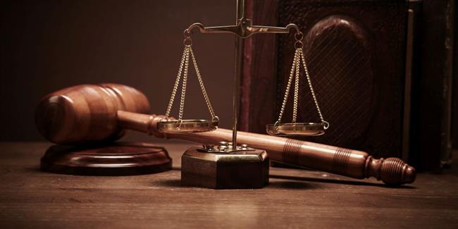السجن المؤبد لـ«فني محمول» بتهمة الانضمام لجماعة إرهابية