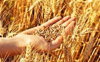 تعرض الأمن الغذائي للعديد من التهديدات.. وخبراء: الزيادة السكانية على رأس تلك المهددات