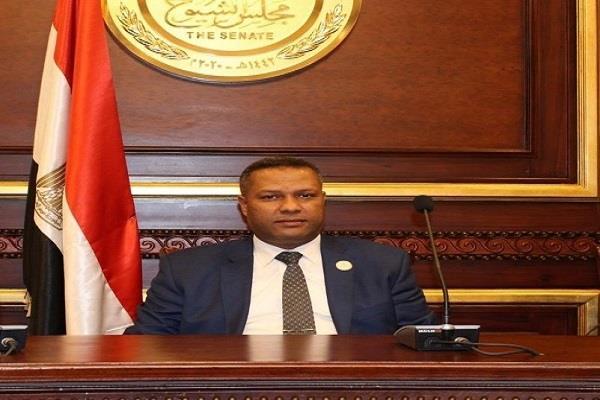 برلماني يشيد بجهود القوات المسلحة في القضاء على البؤر الإرهابية