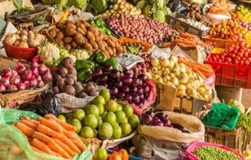 انخفاض الخيار والطماطم.. أسعار الخضار اليوم 2-8-2021